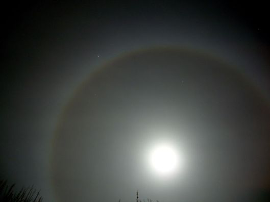 800px-Moon_ring snty tact WC