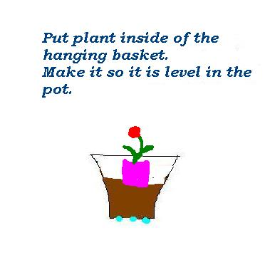 put plant in pot